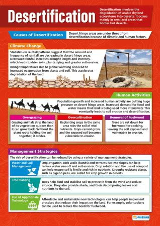 Desertification Poster   Geography   Daydream Education