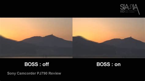 Sony Camcorder PJ790 Stabilizer Function BOSS TEST sunset